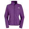 The North Face Apex Bionic Jacket from $94.95: Women (Large) or Men (X-Large, XX-Large)