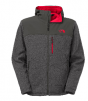 The North Face Men Insulated Gordon Lyons Hoodie